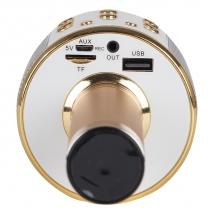 Караоке-микрофон WSTER WS-858 (original) золотой