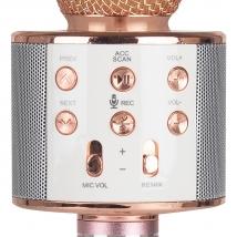 Караоке-микрофон WSTER WS-858 (original) розово-золотой