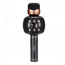 Караоке-микрофон WSTER WS-2911 (original) черный